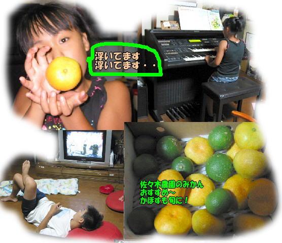 f0082367_9522941.jpg