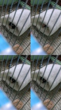 f0126418_2004698.jpg