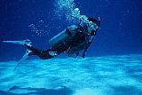 沖縄が、呼んでいる!?!_d0046025_2033417.jpg