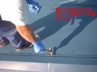 屋根塗装工事_f0031037_185869.jpg
