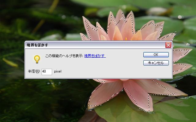 f0041908_154135.jpg