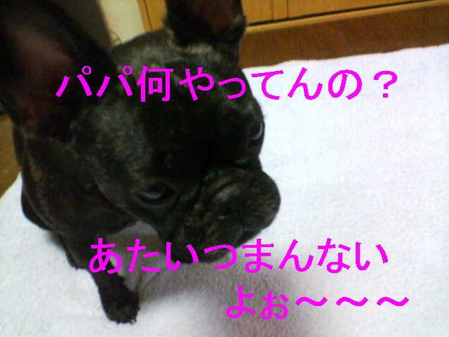 b0076733_03930100.jpg