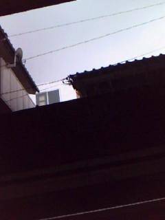 f0148379_1455756.jpg