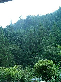民宿の縁側からの景色o(^-^)o_c0038100_5475944.jpg