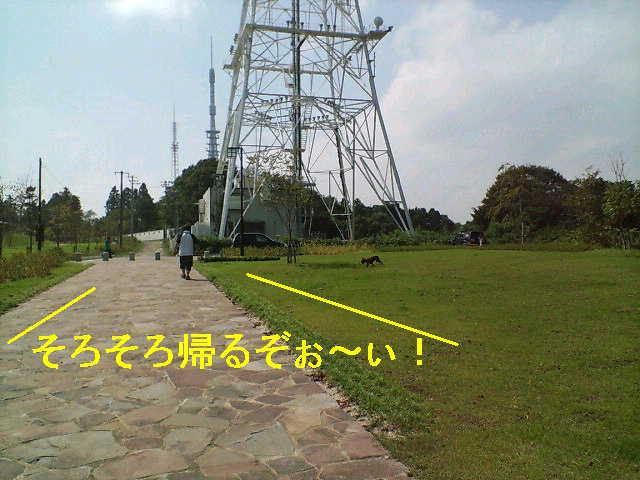 b0076733_20132132.jpg