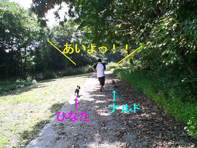 b0076733_2013435.jpg