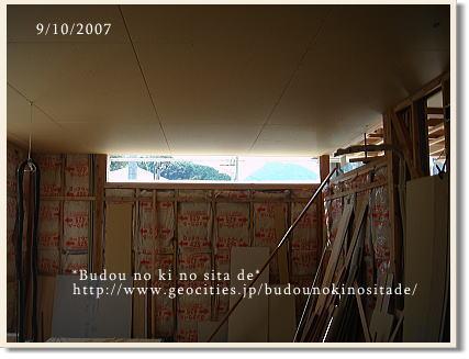 c0103049_1647080.jpg