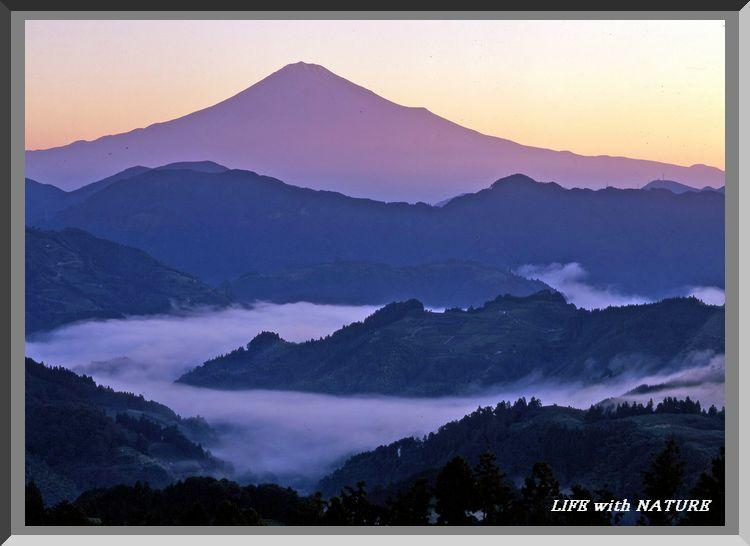 富士と雲海_b0093088_7154597.jpg