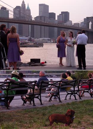 ブルックリン・ブリッジ・パークで見かけた幸せなひととき_b0007805_9223265.jpg