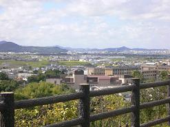 七回忌で和歌山に。_f0132307_2351528.jpg