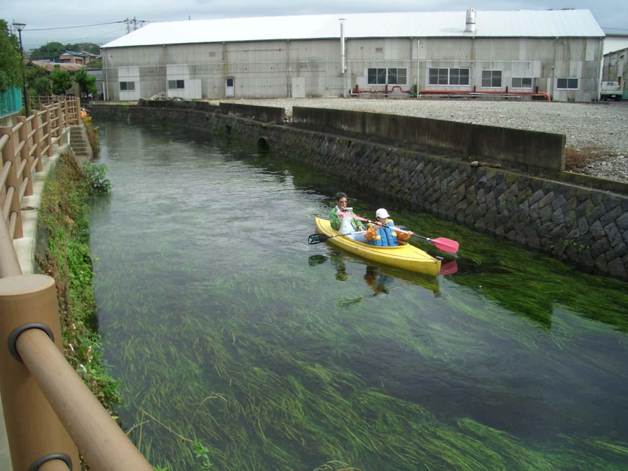 田宿川・滝川の川下り_f0141310_22573753.jpg