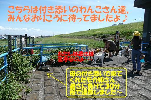 f0121712_11443943.jpg