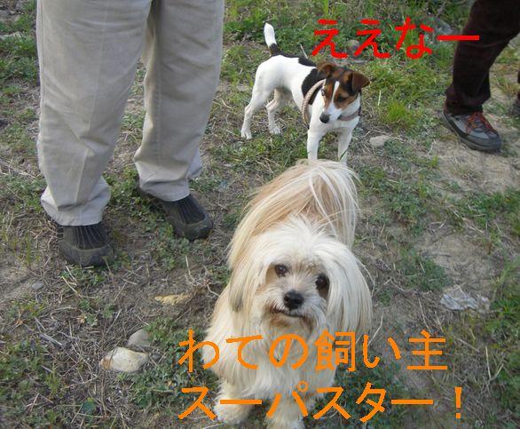 f0053952_20105529.jpg
