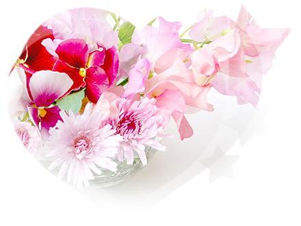 お花をあげましょう