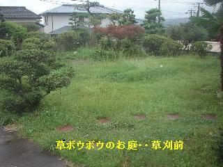 f0031037_1746979.jpg
