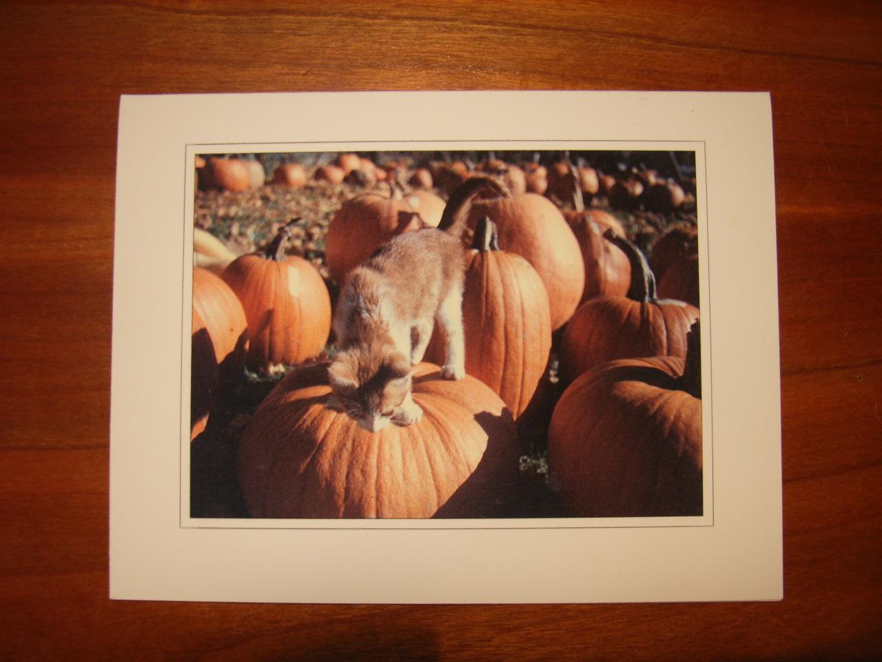 my pumpkin_d0106242_9261766.jpg