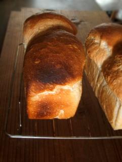 バター2%だけのミニ食パン_c0110869_21224699.jpg