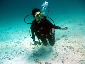 体験ダイビングマスター_f0144385_20284858.jpg
