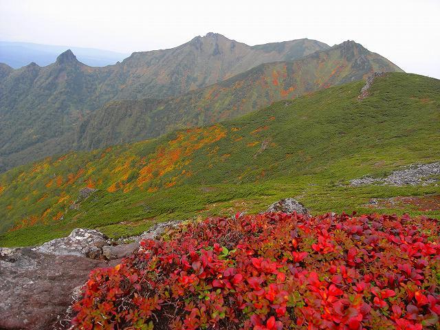 紅葉の平山、ニセイカウシュッペ山、愛別岳等に登る_f0138096_20515183.jpg