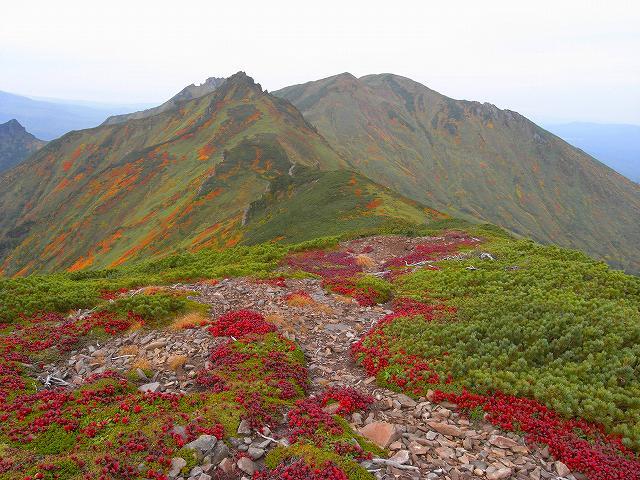紅葉の平山、ニセイカウシュッペ山、愛別岳等に登る_f0138096_20542616.jpg