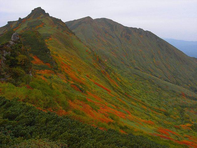 紅葉の平山、ニセイカウシュッペ山、愛別岳等に登る_f0138096_2055850.jpg