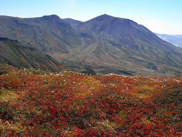 紅葉の平山、ニセイカウシュッペ山、愛別岳等に登る_f0138096_20574447.jpg