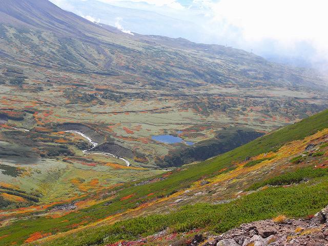 紅葉の平山、ニセイカウシュッペ山、愛別岳等に登る_f0138096_20582543.jpg