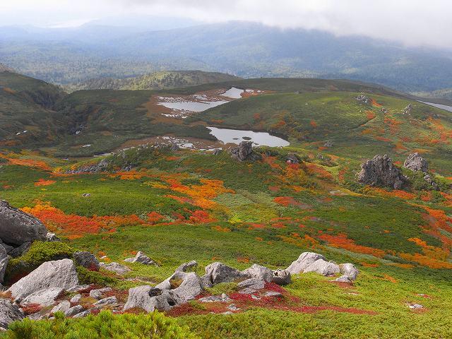 紅葉の平山、ニセイカウシュッペ山、愛別岳等に登る_f0138096_2059837.jpg