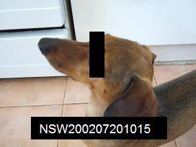 f0028197_19212777.jpg