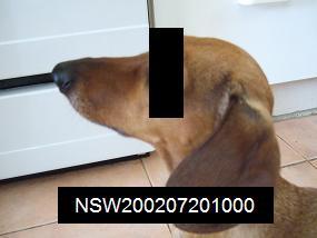 f0028197_19215071.jpg