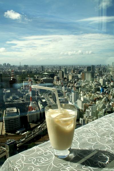 東京上空、またいらっしゃいました_d0028499_9375385.jpg