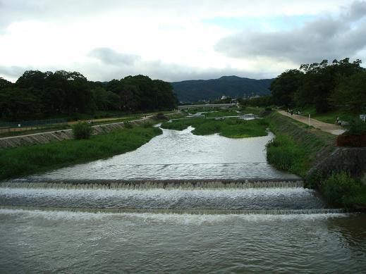 鴨川の犬達 in 京都_c0099133_1331622.jpg