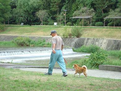 鴨川の犬達 in 京都_c0099133_134223.jpg