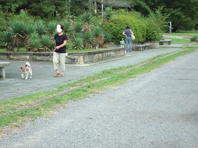 鴨川の犬達 in 京都_c0099133_134437.jpg