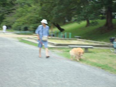 鴨川の犬達 in 京都_c0099133_1345220.jpg