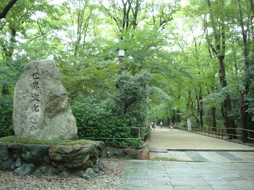 鴨川の犬達 in 京都_c0099133_14932100.jpg