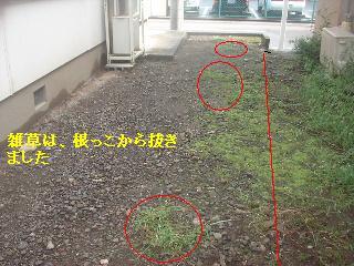 f0031037_1325516.jpg