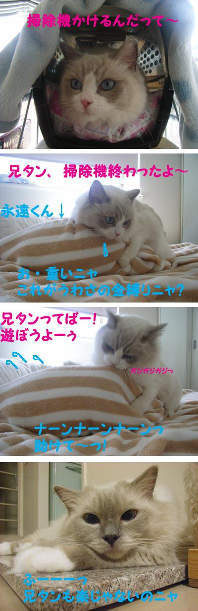 f0014893_20112033.jpg