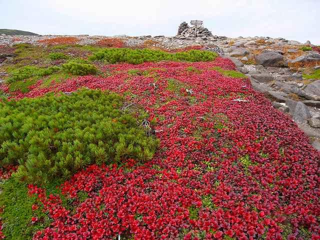 9月17日、平山登山その1_f0138096_13472479.jpg