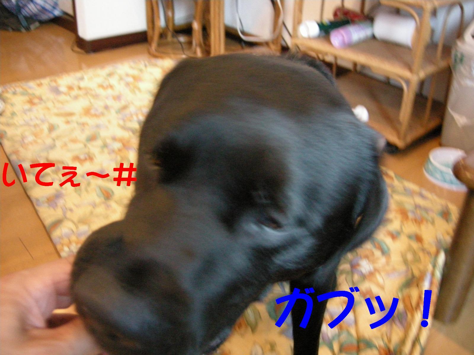 b0112998_23422557.jpg