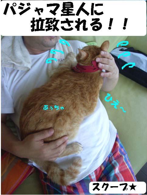 d0081025_18594124.jpg