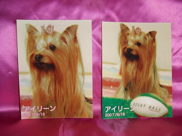 f0124830_0254569.jpg