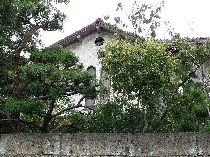 太田酒造貴賓館(旧小寺源吾別邸)_c0094541_1139519.jpg