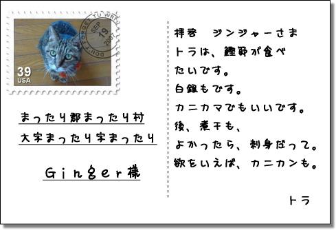 b0066947_2025685.jpg