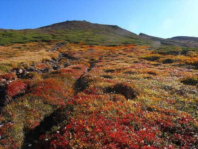 9月18日、愛山渓温泉から永山岳_f0138096_2001717.jpg