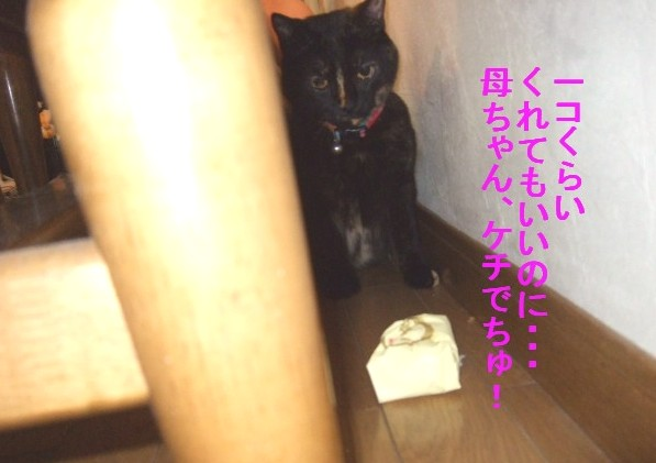 b0087400_030899.jpg