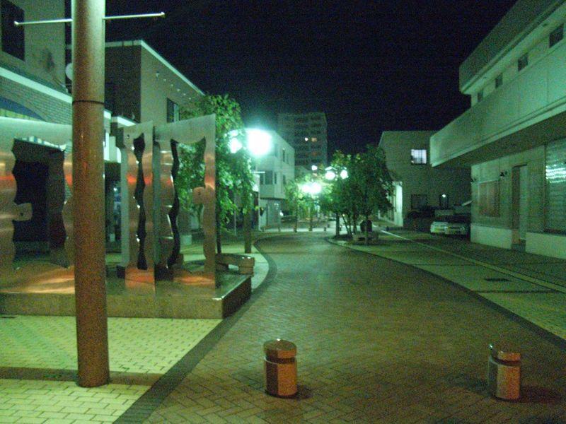 night walk_c0025115_412529.jpg
