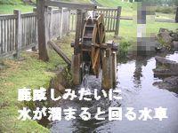 c0133470_16481881.jpg