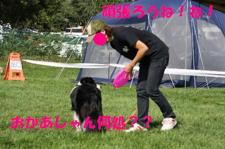 c0046807_9252012.jpg
