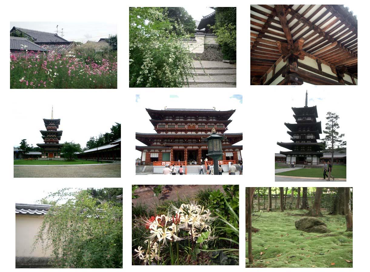 西の京_f0129726_20343697.jpg